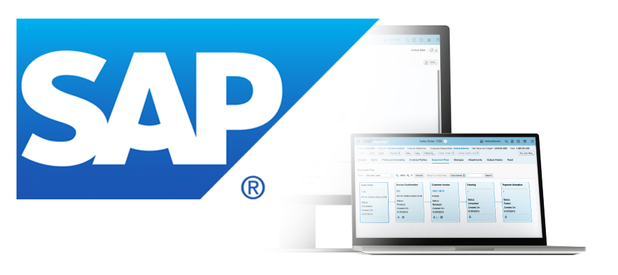 Implementace do systému SAP